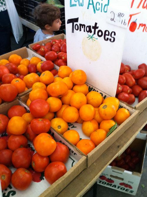 greenmarket_tomatoes.jpg