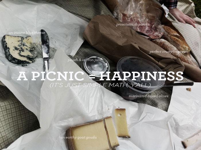 picnic_fun2.jpg