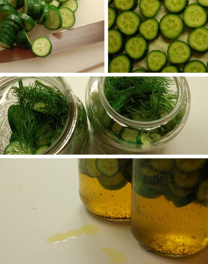 pickles_2-807x1024.jpg