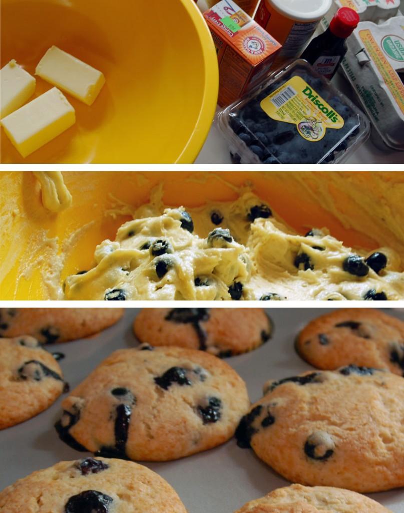 blueberry_muffins-807x1024.jpg