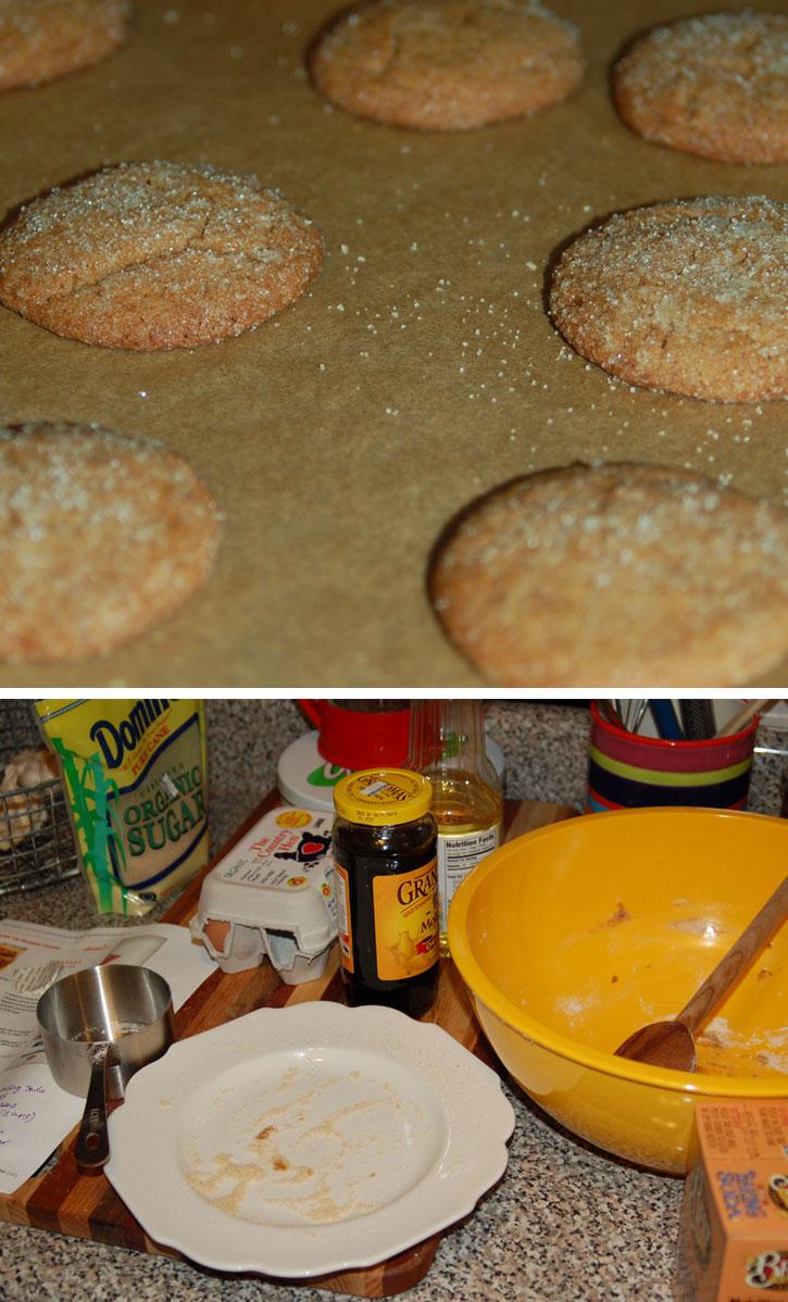 molasses_cookies.jpg
