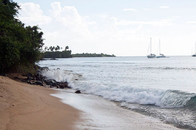 oldsweetsong_vieques06