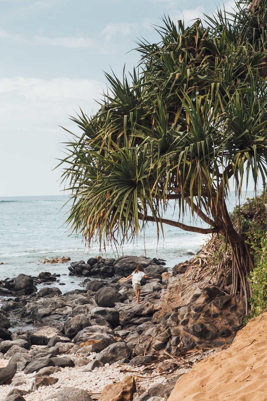 Hana, Maui, by Madeline Lu-2.jpg