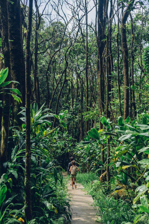 Hana, Maui, by Madeline Lu-26.jpg