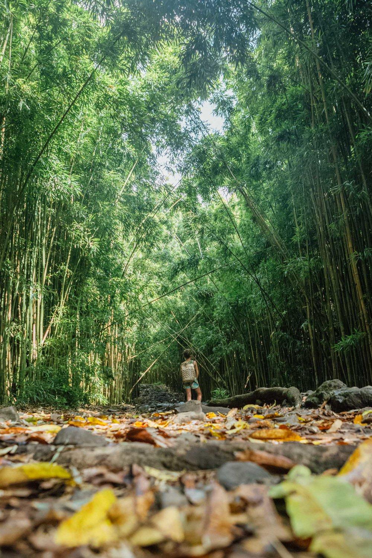 Hana, Maui, by Madeline Lu-30.jpg