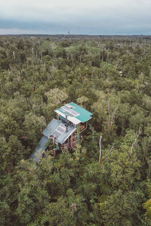 Treehouse-4.jpg