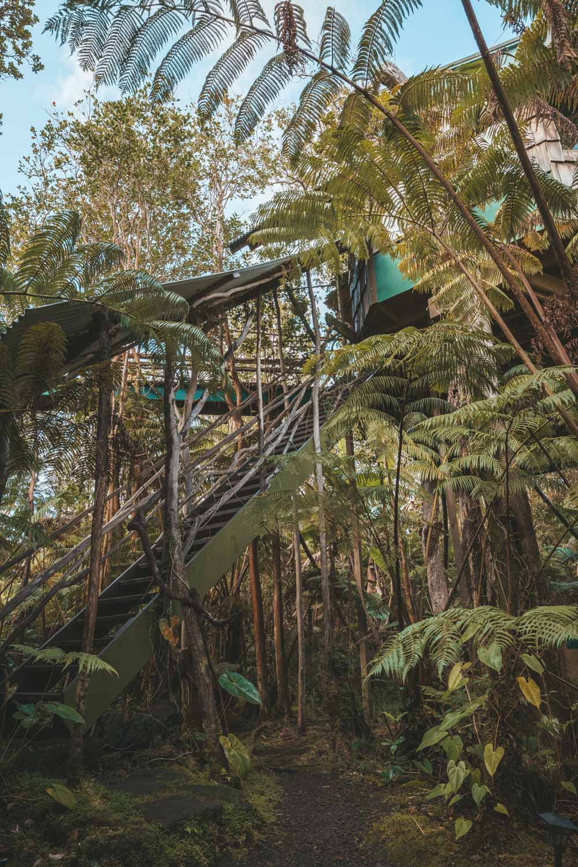 Treehouse-10.jpg