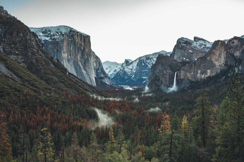 Yosemite National Park, Madeline Lu