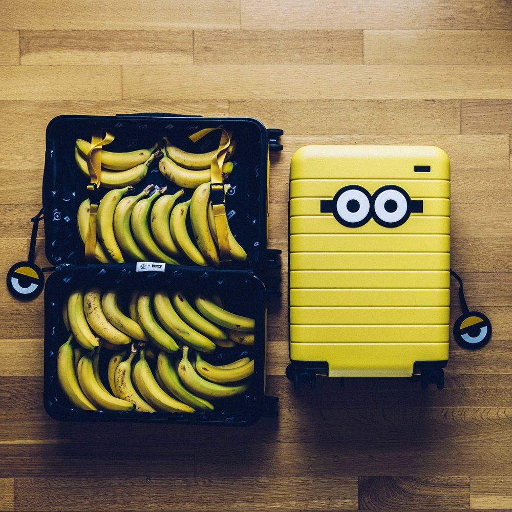 Minion+&+Away+Luggage-1.jpg
