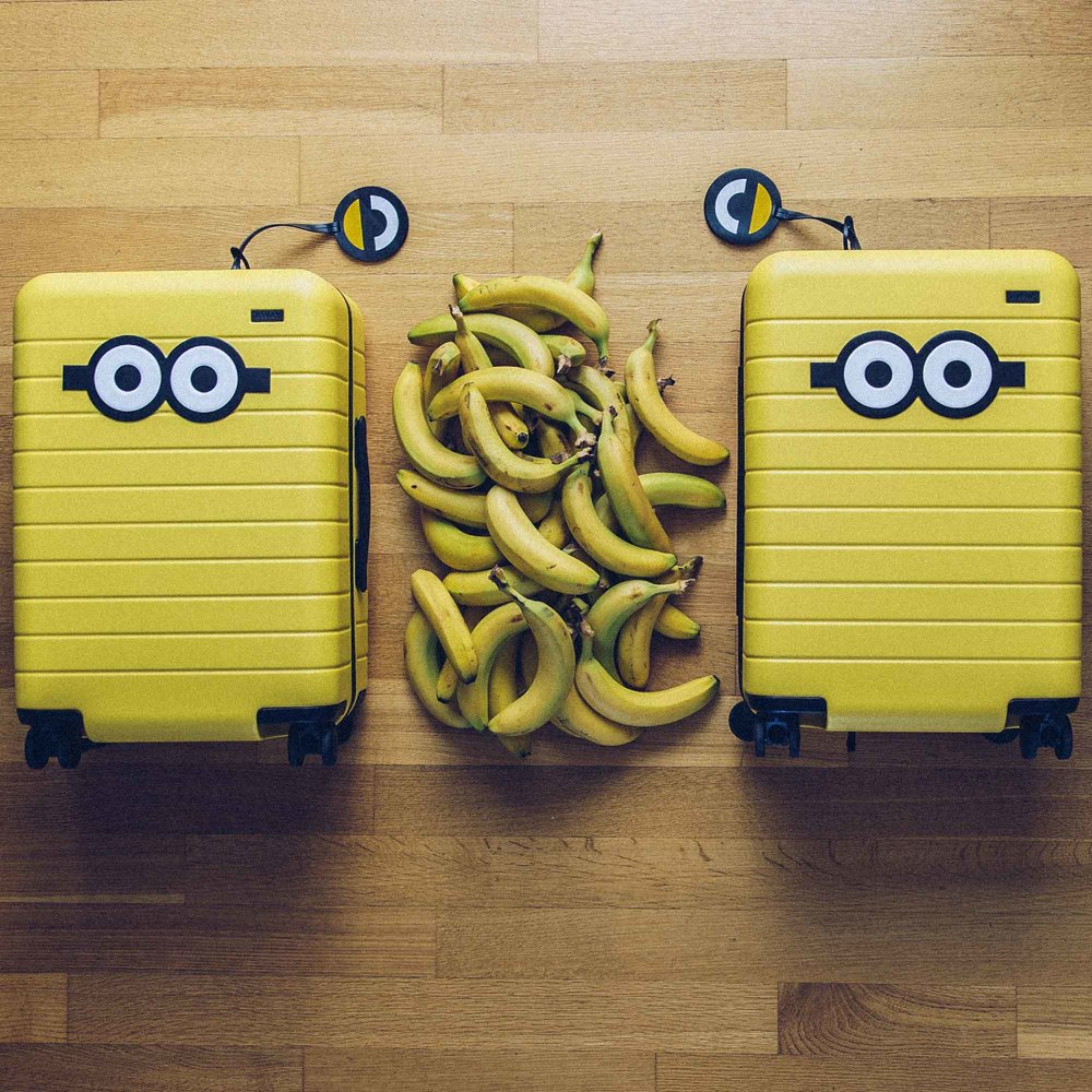 Minion+&+Away+Luggage-2.jpg