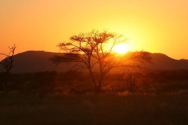 The Bush House_ African_sunrise.jpg