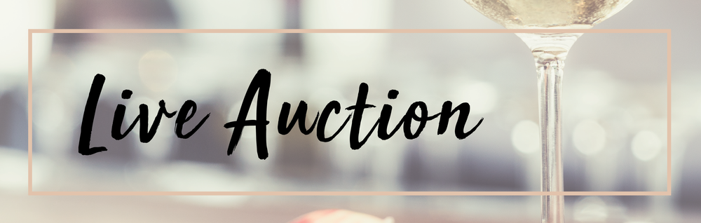 live auction banner_early bird.png