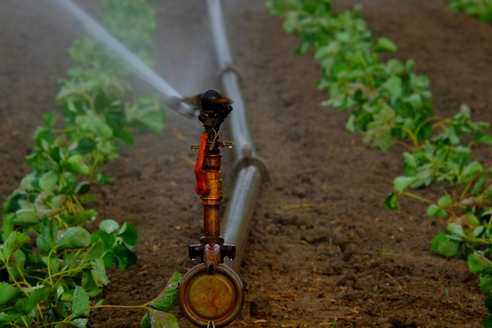 drinking water treatment - KfarYarokVillageDate: 2017