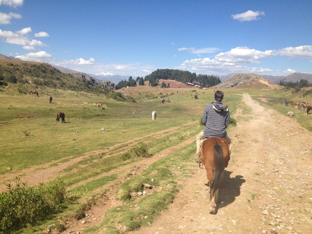a p2 horsback.JPG