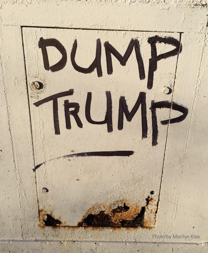 DumpTrump.jpg