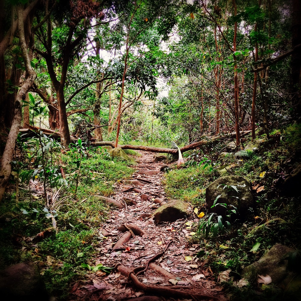 The forbidden path at I'ao Valley