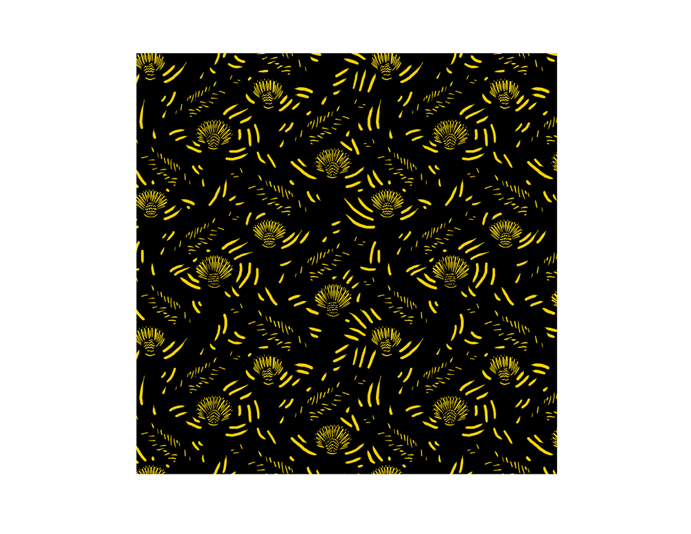 dandy_yellow_black.jpg