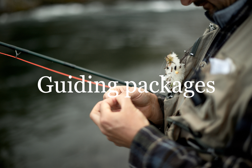 Guiding packages
