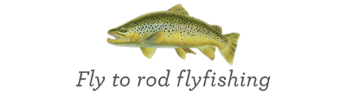 Fly to Rod Fly Fishing