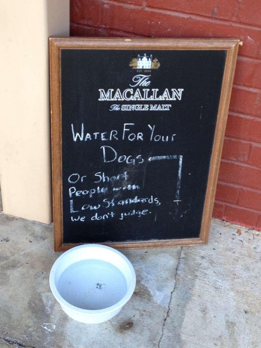 chalkboard-sign-design-idea-dog-water.jpg