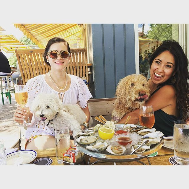 @gopuppygo and Lucy living the good life! #clarks #austin #foodie #puppies #summer