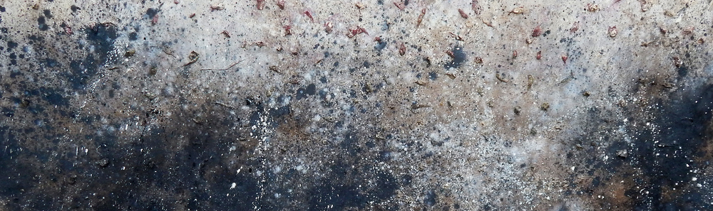 "Adam Turl, ""Plantation Paintings VII: March to the Sea,"" oil, acrylic, cotton and ash on canvas (Detail, 2012)"