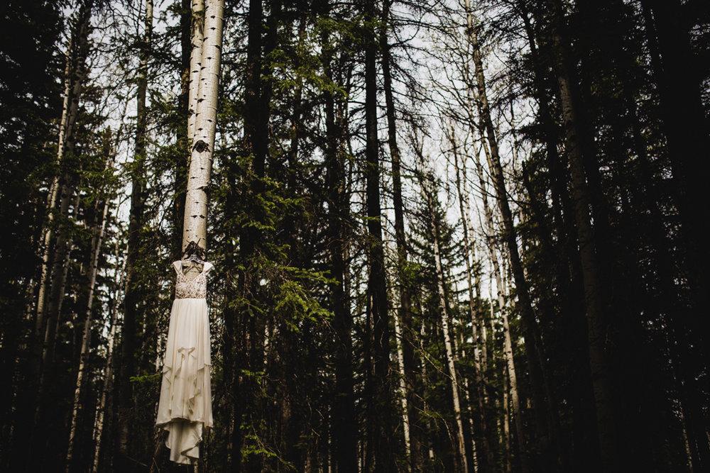 BanffWeddingPhotography-4.jpg
