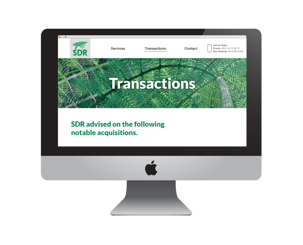 SDR_transactions-01.png