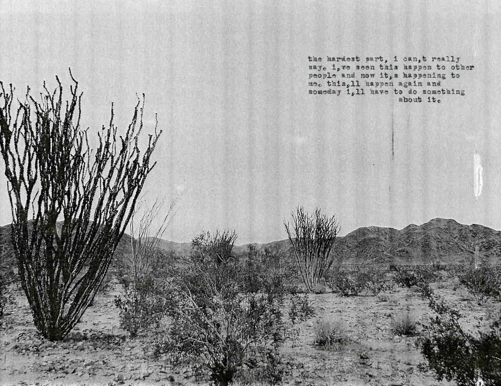 The Fucking Desert004.jpg