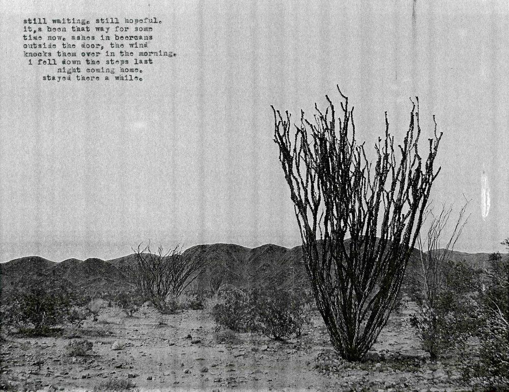 The Fucking Desert005.jpg
