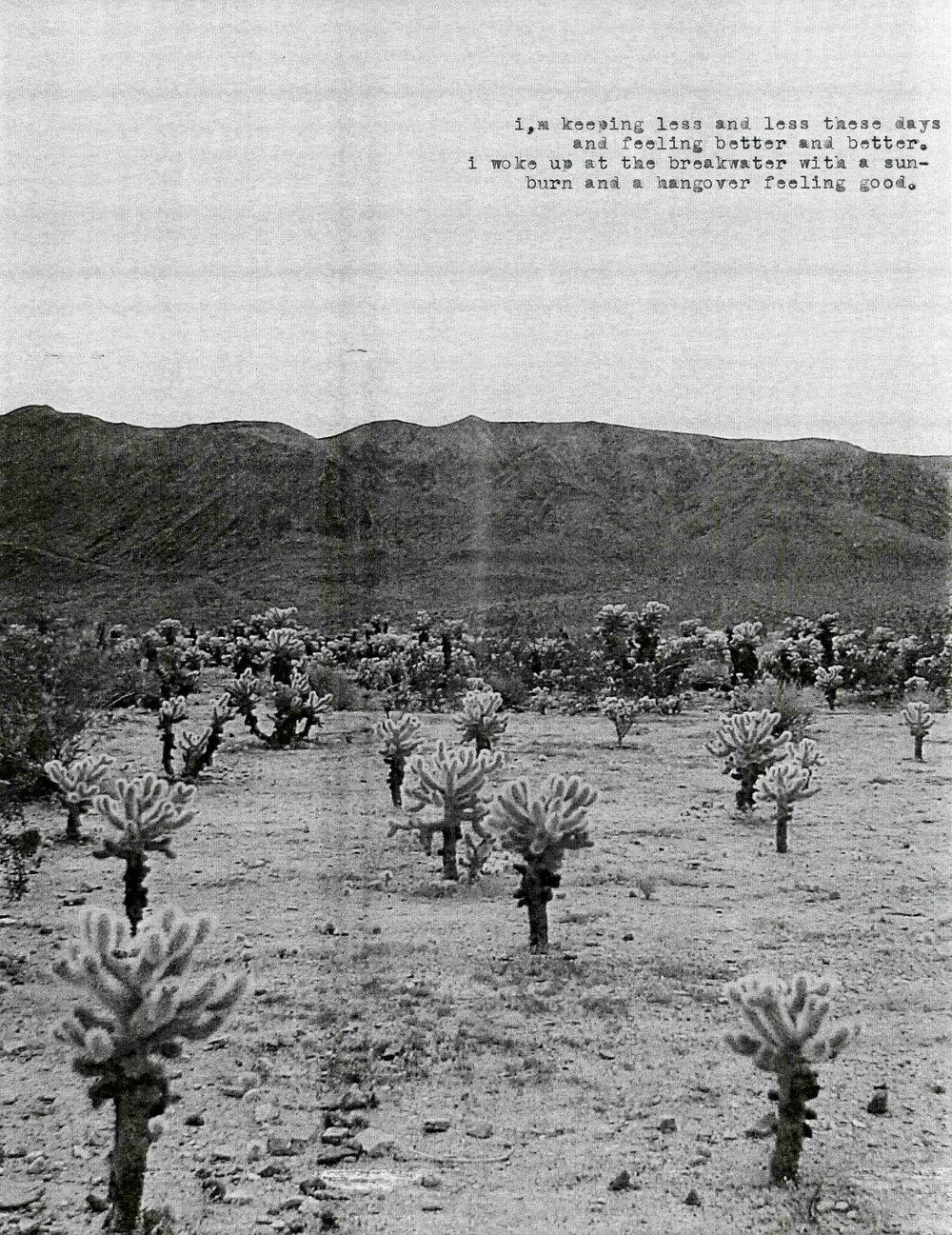The Fucking Desert010.jpg
