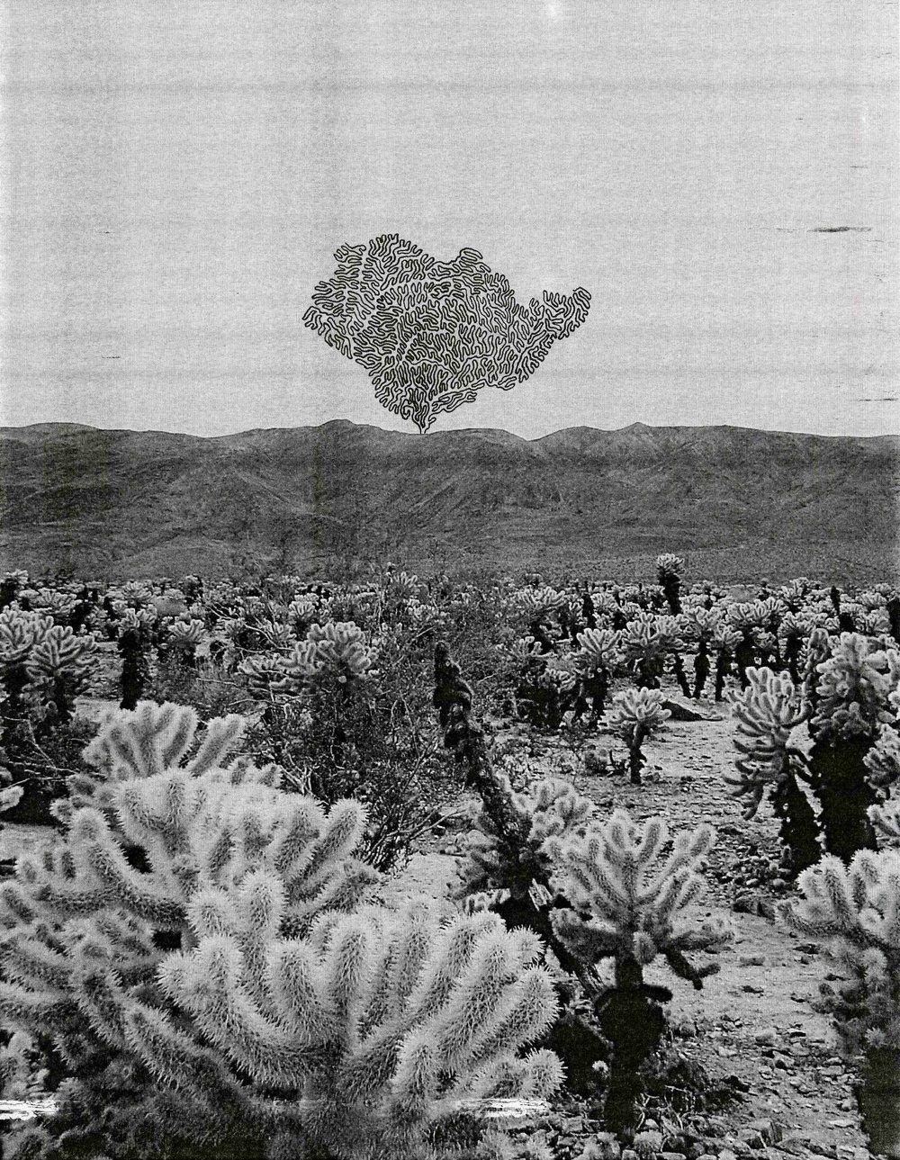 The Fucking Desert012.jpg