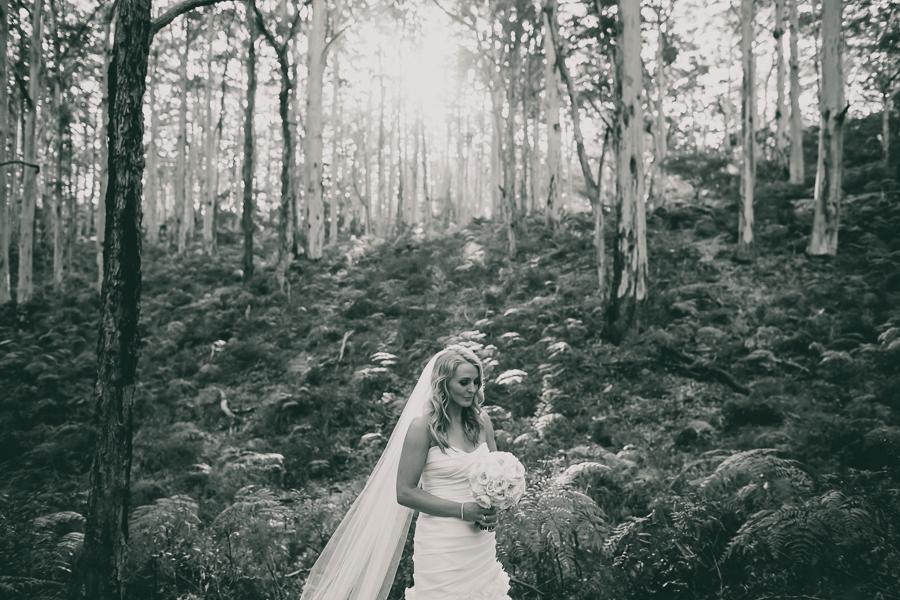 sarah lachie-108.jpg