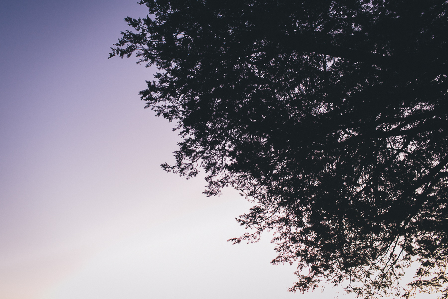 blog-128.jpg