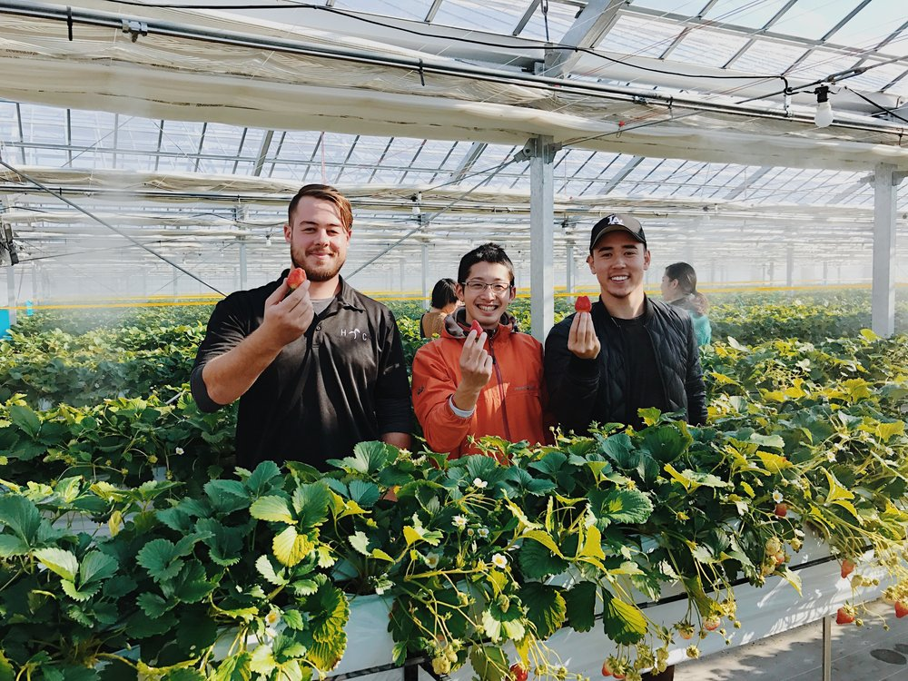 Katsube-san, an IT specialist turned farmer and community cultivator.