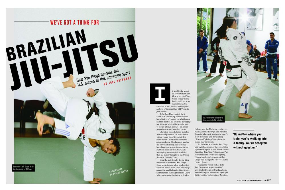 website magazine spreads5.jpg