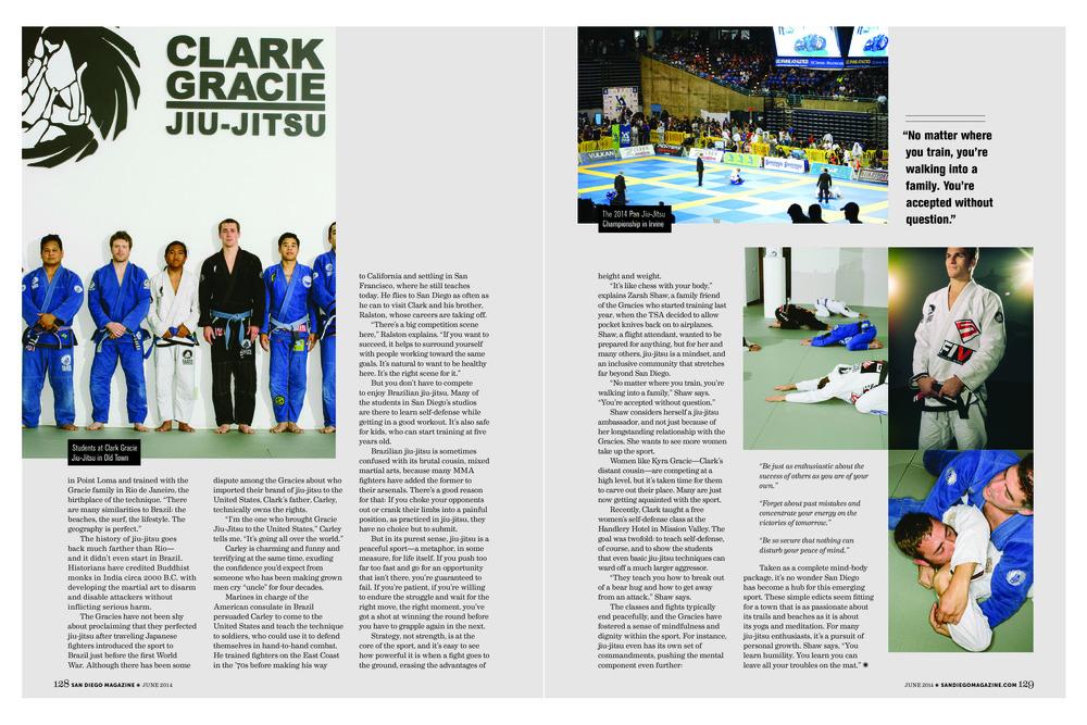 website magazine spreads6.jpg
