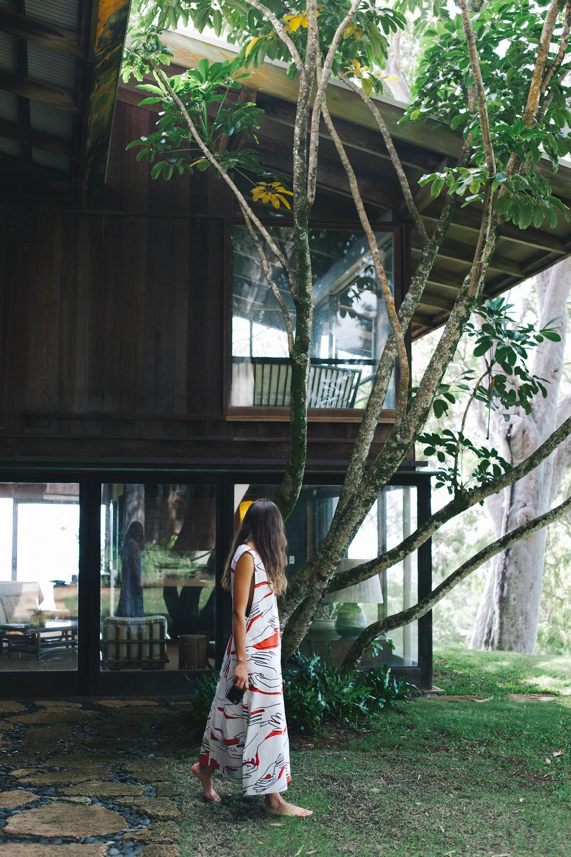 Celeste x Hawaii (7 of 69).jpg