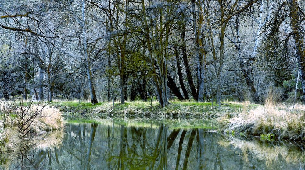 B_Eschbach Blue_Photograph.jpg