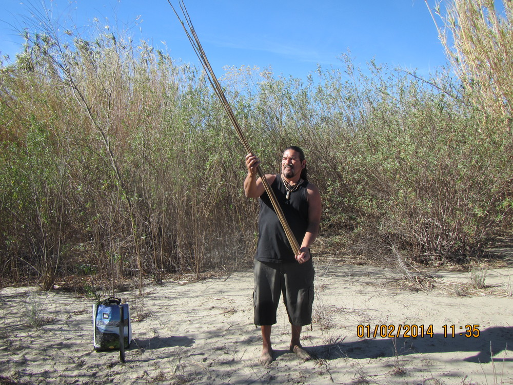 Mati Waiya, Chumash Ceremonial Elder and Wishtoyo Executive Director, harvesting the medicinal Arrow Weed from the Santa Clara River in the proposed Newhall Project area