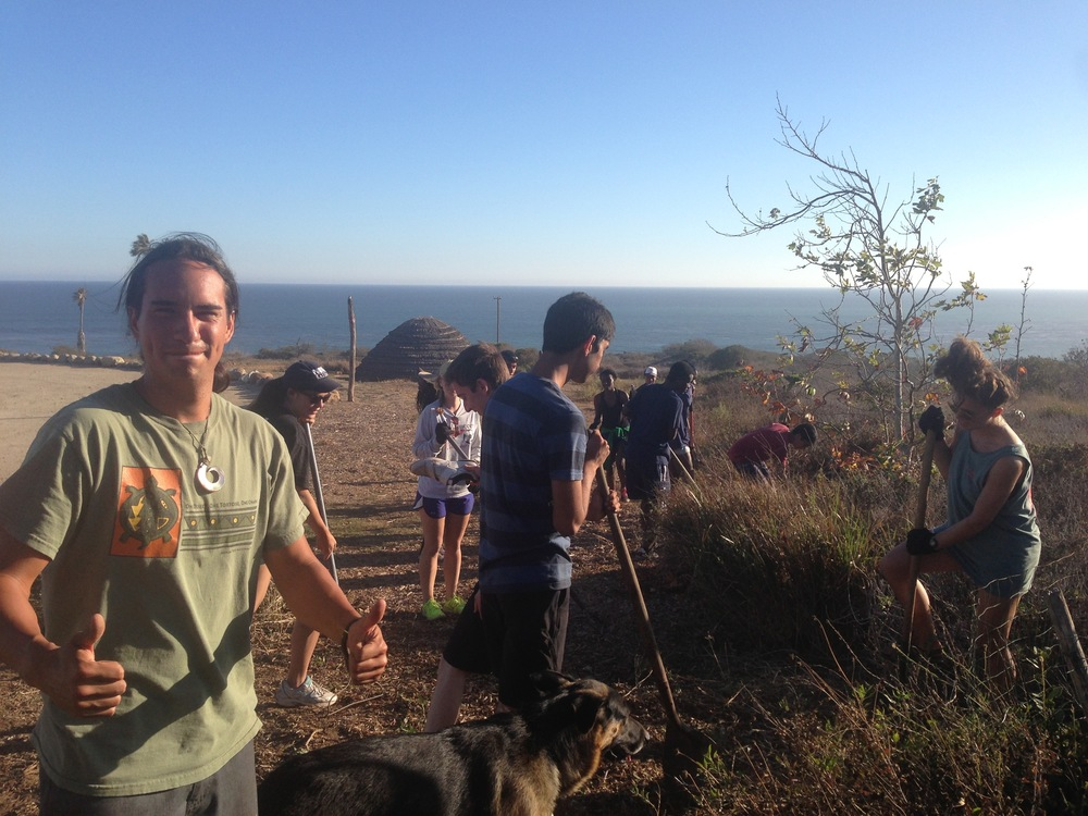 International University Students learn of the importance of native plant restoration work by volunteering with Nicholas Hummingbird, Native Plant Specialist.