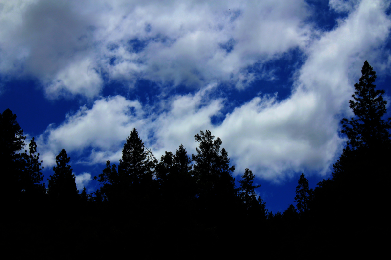 Norcal+Sky.png