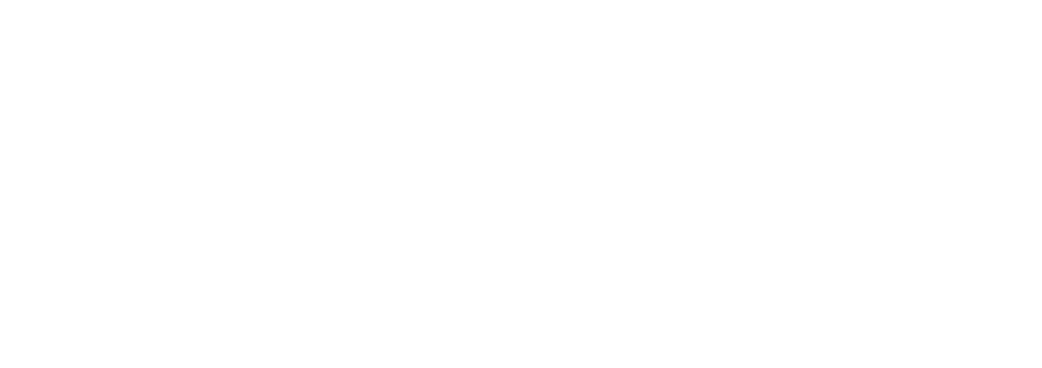 June Soul by Ali Rodriguez