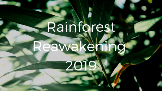 Rainforest Reawakening 2019.png