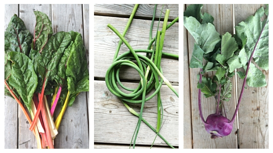 Swiss Chard, Garlic Scapes and Kohlrabi
