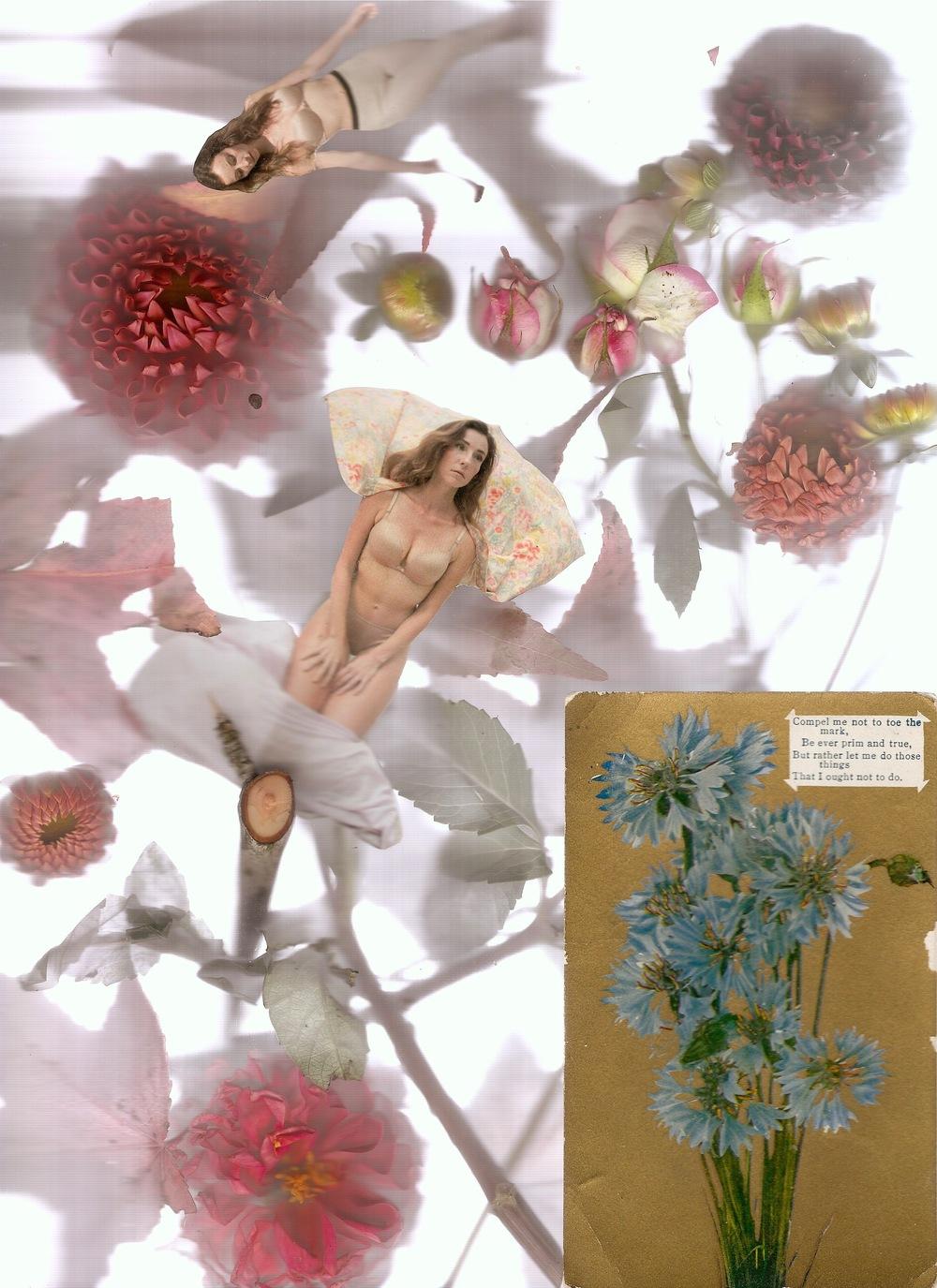 flower2 1.jpeg