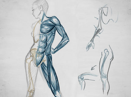 Figure Drawing Courses Studio Technique