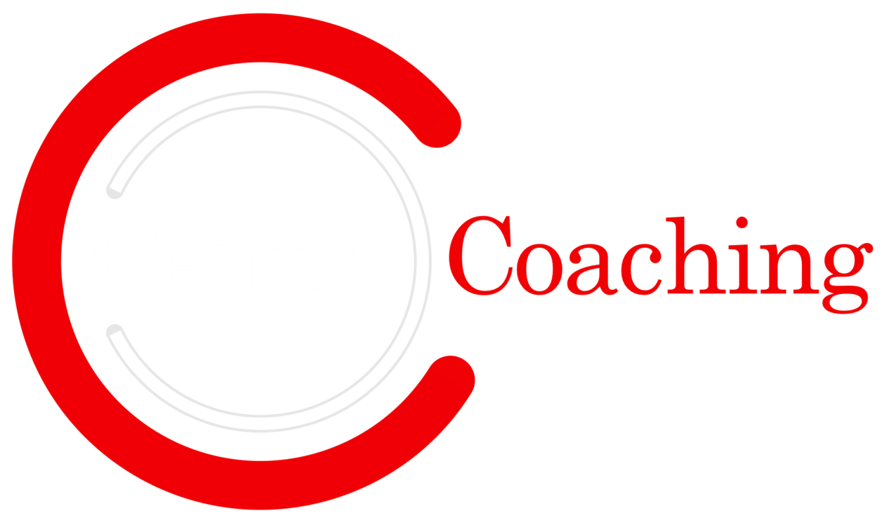 Centro Coaching | Executive Coaching London | Organisational Development Consultancy | Team Building London
