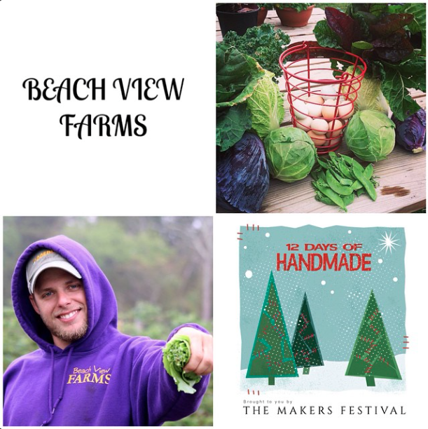 BeachViewFarms