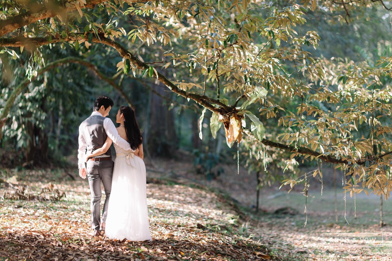 Derrick angie pre wedding arch vow studio derrick angie portfolio 005g junglespirit Gallery